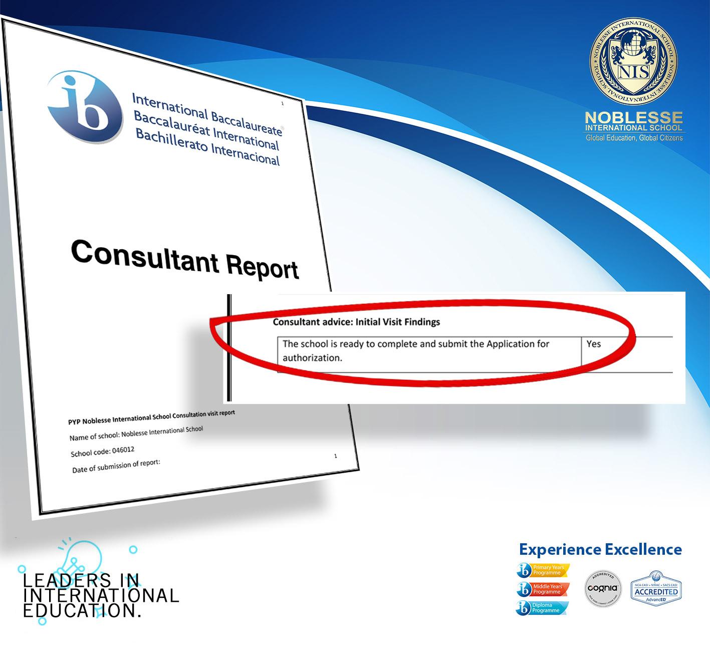 consultant report 2
